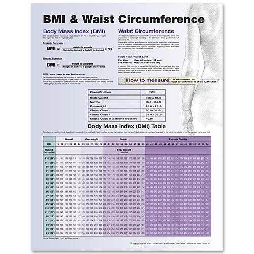 Bmi Waist Circumference Laminated Chart An 9780781772273